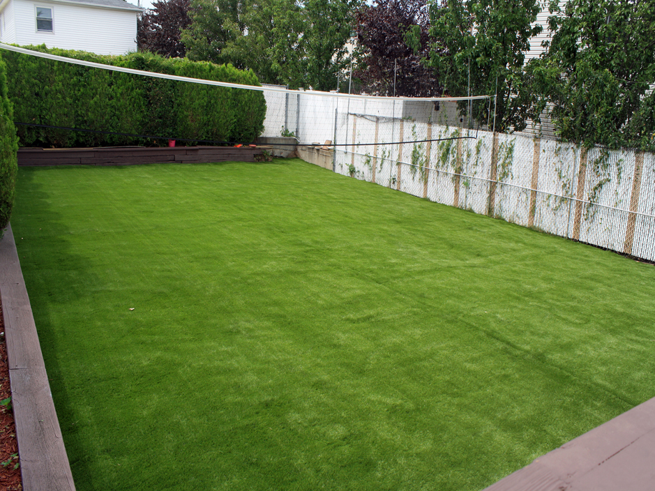 Backyard Turf Grass : Artificial Grass Carpet Snowflake, Arizona Garden Ideas, Backyard