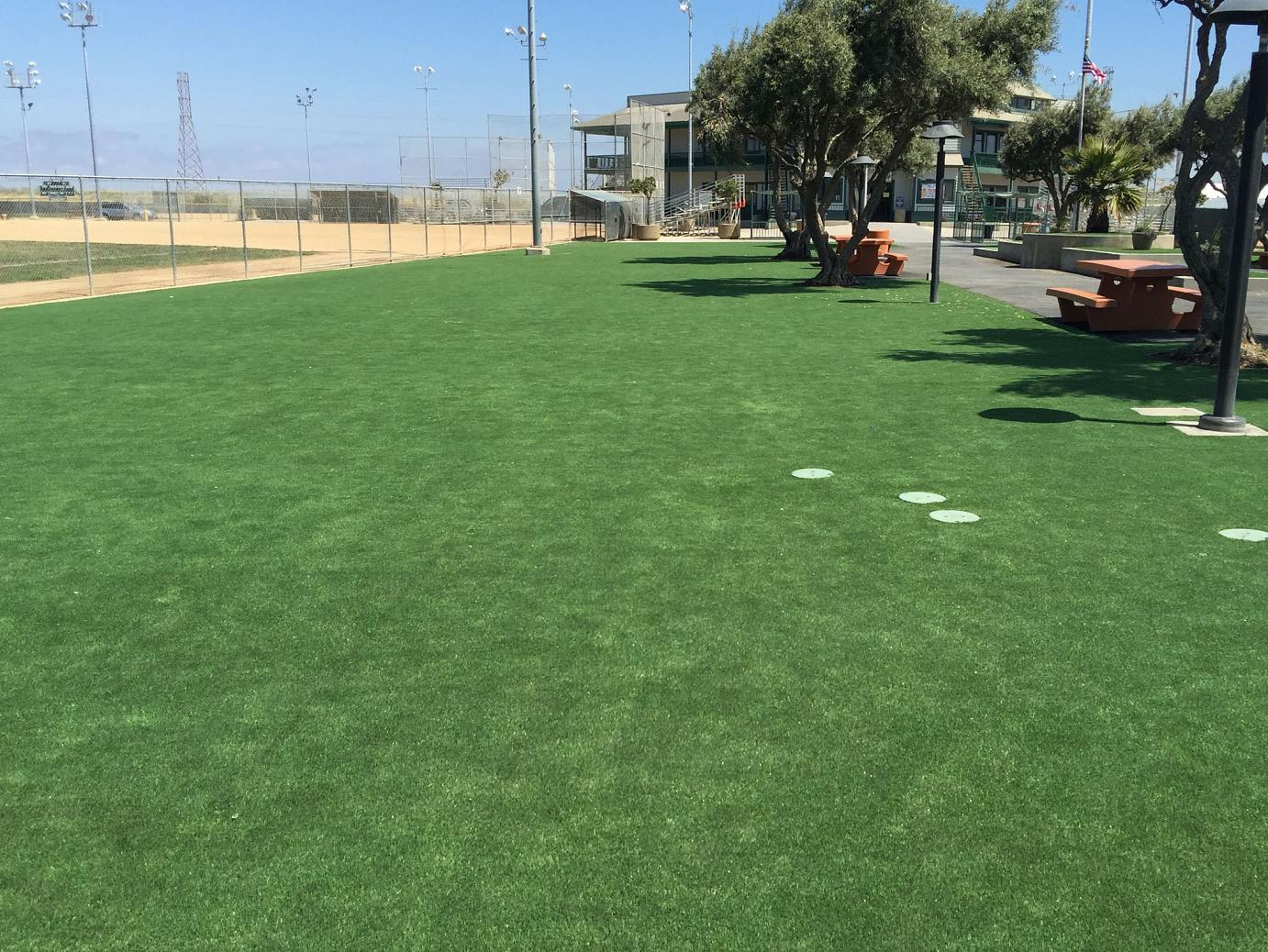 Artificial Turf Cost Peeples Valley