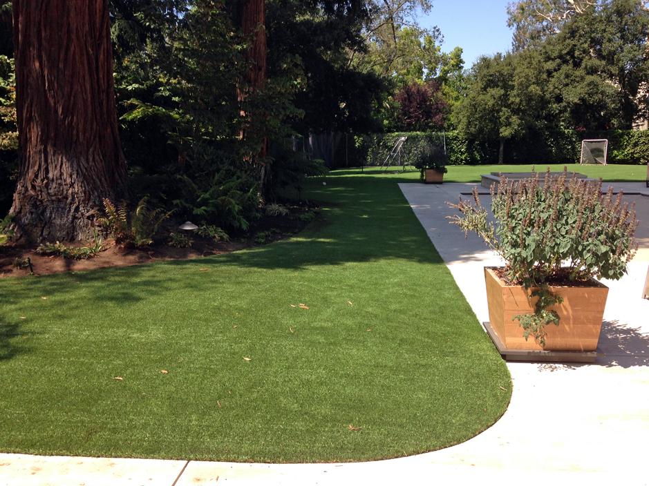 City Front Yard Landscaping Ideas Part - 35: Fake Grass Clay Springs, Arizona City Landscape, Front Yard Landscaping  Ideas