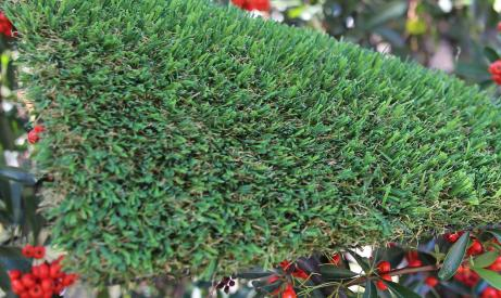 artificialgrass Patriot Spring-76