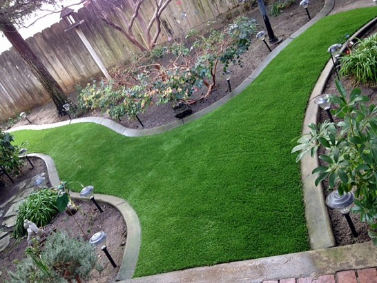 Backyard Turf Grass :  Fake Grass Carpet Sehili, Arizona Lawn And Landscape, Backyard Design