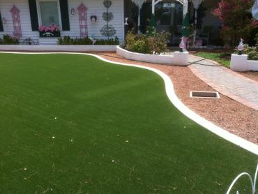 Artificial Grass Photos: Fake Lawn Pine, Arizona Home And Garden, Front Yard Design