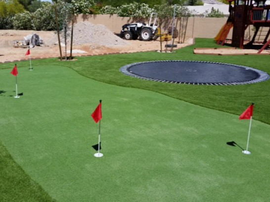 Green Lawn Congress, Arizona Outdoor Putting Green, Backyards artificial grass