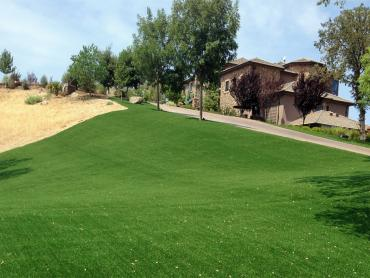 Artificial Grass Photos: Plastic Grass Drexel Heights, Arizona Landscaping Business, Front Yard