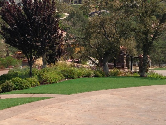 Artificial Grass Photos: Plastic Grass Tolleson, Arizona City Landscape, Backyard Makeover