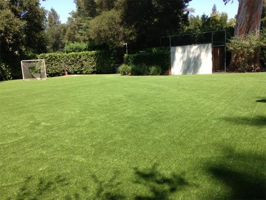 Artificial Grass Photos: Synthetic Lawn Dewey-Humboldt, Arizona Eco Friendly Products, Small Backyard Ideas